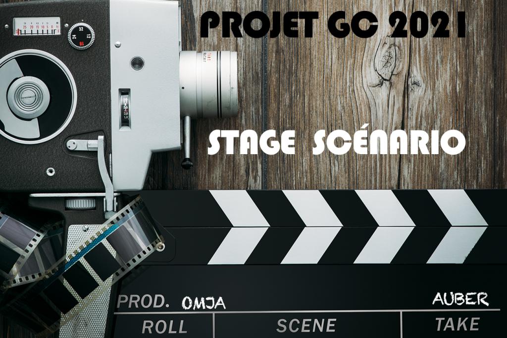stage scénario